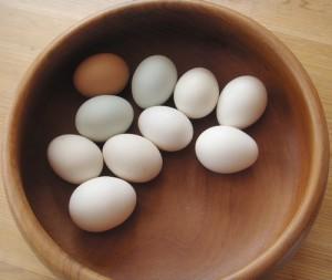 reduce-food-waste-eggs -zero-waste-week