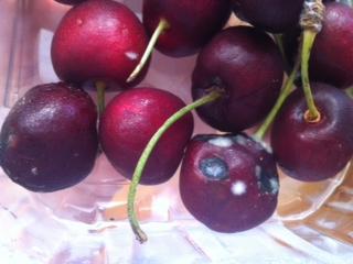food waste friday cherries