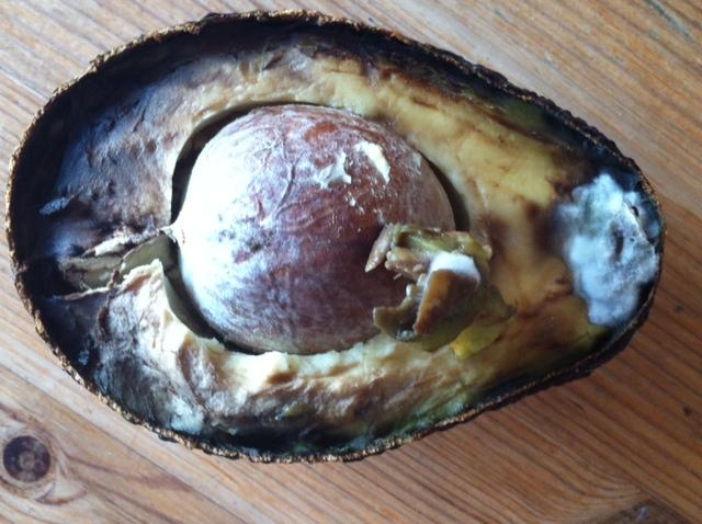 moudly avocado - food waste friday