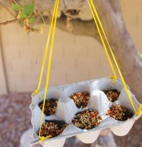 reuse an eggbox to make a bird feeder