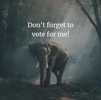 vote for rachelle strauss in resource magazine hot 100