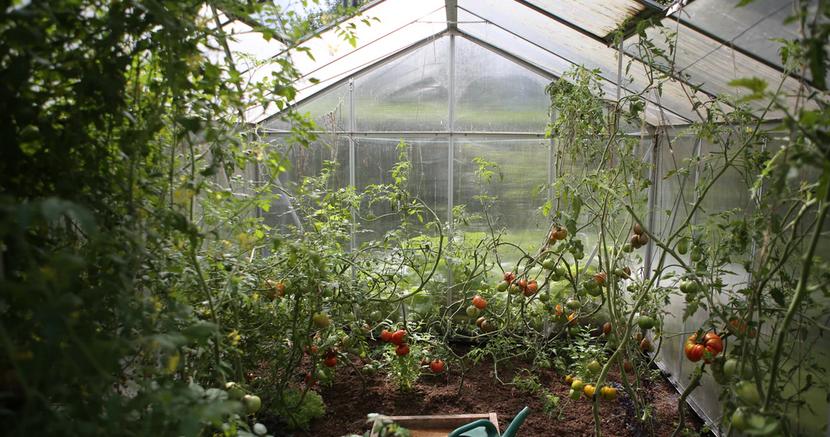 zero waste greenhouse